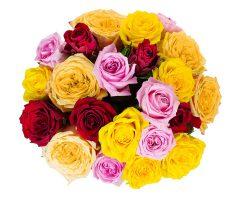Bild von [Blume ideal] 20 Rosen für 16,94€ inkl. Versand