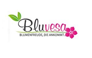 Bluvesa Logo